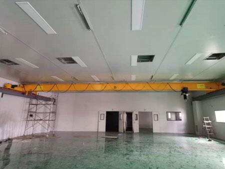 安徽习宁生物科技有限公司洁净车间安装2T防尘起重机